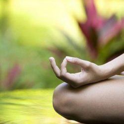 RELAXED HATHA AND MEDITATION – Θεραπευτικό Σεμινάριο Γιόγκα
